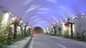 0Zhongnanshan-Tunnel