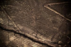 Nazca Lines Spider. Taken in Nazca, Peru.