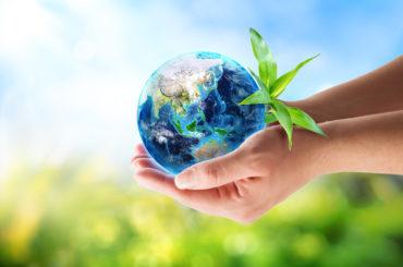 El Reto del Carbono