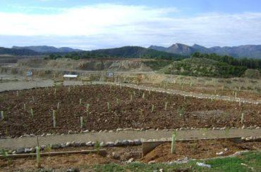 Salt del Llop en Sagunto, un ejemplo de restauración ecológica de canteras